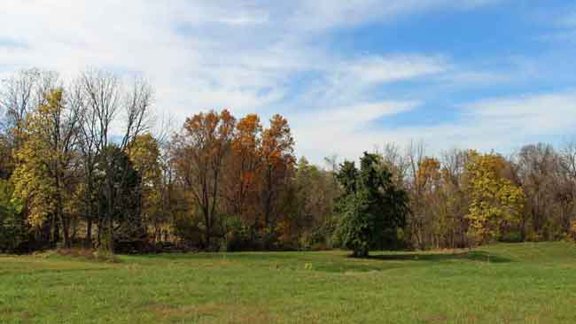 Farview Farm Estates Lot 15